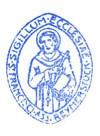 Reijmerstok parochie 80 jaar